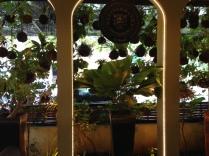 Their garden porch.
