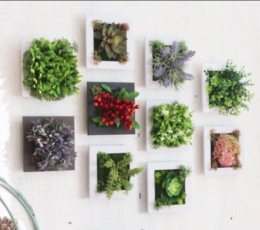 Plant frames I bought online.