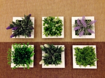 Artificial plants in white frames.
